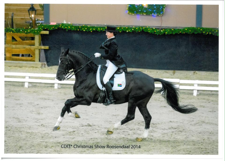 Johnson and Verdi end 2014 on a high note